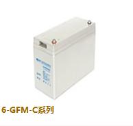 光宇蓄电池6-GFM-C系列